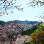 奈良県デートスポットランキング♥地元民おすすめ10選