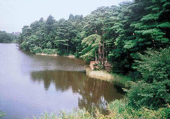 仙台の心霊スポット⑤与兵衛沼・よへいぬま