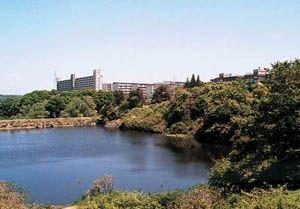 仙台の心霊スポット⑦入水自殺が絶えない…鶴ケ谷中央公園・ひょうたん沼