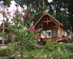 ⑧北欧感たっぷり!花の森オートキャンピア