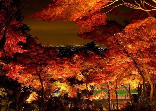 茨城県紅葉名所②ロープウェイやケーブルカーからの絶景!筑波山