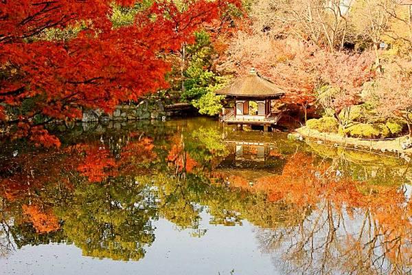 ①気分はまるでお殿様?「和歌山城 紅葉渓庭園 紅松庵」