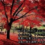 新潟県の紅葉名所&見ごろ時期★地元民おすすめ10選