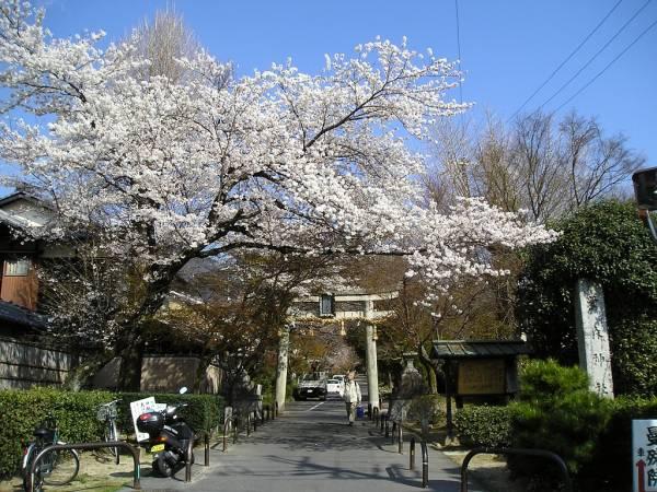 京都神社巡りランキング①新緑と紅葉が美しい・鷺森神社 参道