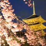 京都のお寺巡り★地元民おすすめランキングTOP10