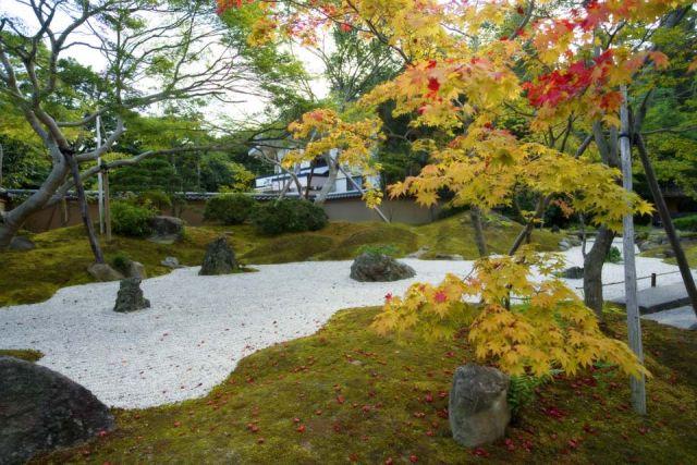 松島観光スポットランキング③紅葉の名所!円通院