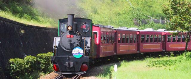 愛知県公園ランキング①本物の蒸気機関車に乗っちゃおう「愛知こどもの国」
