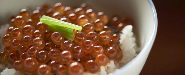 函館海鮮料理ランキング⑤老舗割烹の変わらぬ海鮮の味「冨茂登」