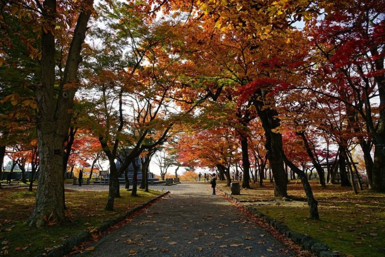 盛岡城跡公園 本丸の紅葉